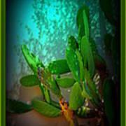 Garden Of Eden Light Poster