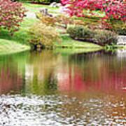 Garden Pond Poster
