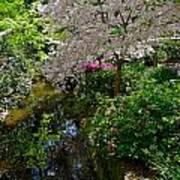 Garden Sanctuary Poster