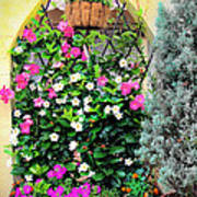 Garden Screen With Flowers Poster