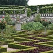 Garden Symmetry Chateau Villandry  Poster