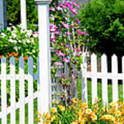 Garden With Picket Fence Poster