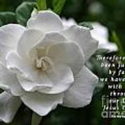 Gardenia Bloom And Scripture Poster
