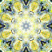 Gardenia Mandala Poster
