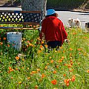 Gardening Distractions In Park Sierra-california Poster
