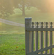 Gate In Morning Fog Poster by Olivier Le Queinec