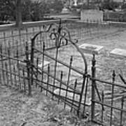 Gated Community In Black And White Poster