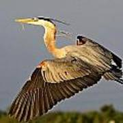 Gbh In Flight Poster