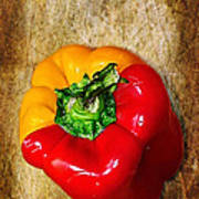 Genetically Modified Capsicum Poster