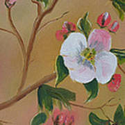 Georgia Flowers - Apple Blossoms- Stretched Poster