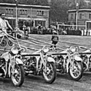 German Chariots At Potsdam Poster