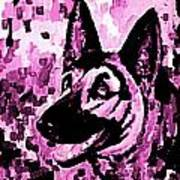 German Shepard In Purples Poster