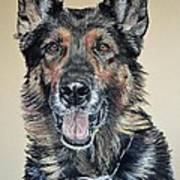 German Shepherd Jim Poster