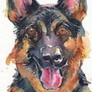 German Shepherd Watercolor Poster