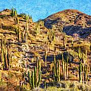 Giant Cordon Cactus Poster