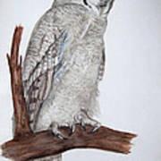 Giant Eagle Owl Poster