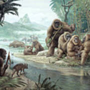 Gigantopithecus With Homo Erectus Poster
