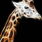 Giraffe Portrait Fractal Poster