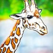 Giraffe Scrimshaw Poster