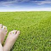 Girls Feet On Grass With Flowers Poster