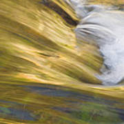 Glacier Stream Glacier National Park Poster