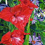 Gladiola And Echinacea Poster