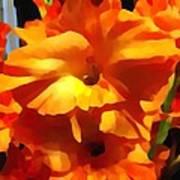 Gladiola Up Close Impression Poster