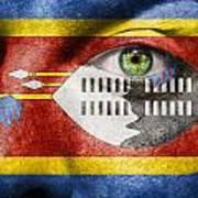 Go Swaziland Poster