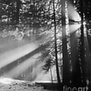 God's Light Poster