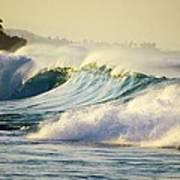 Gold Crested Surf Poster