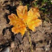Golden Autumn Maple Leaf Filtered Poster