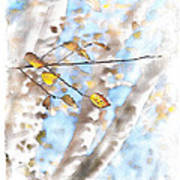 Golden Birch Poster