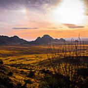 Golden Desert Poster