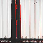 Golden Gate Bridge - Sunset With Bird Poster