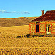 Golden Harvest Poster by Bill  Robinson