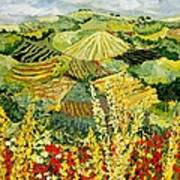 Golden Hedge Poster
