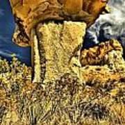 Golden Hoodoo Poster