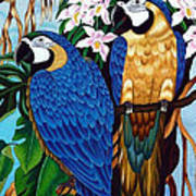 Golden Macaw Hand Embroidery Poster