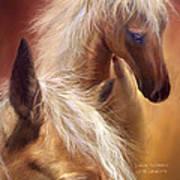 Golden Palomino Poster