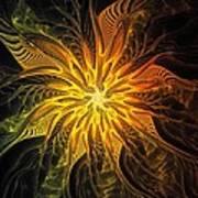 Golden Poinsettia Poster