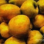 Golden Renaissance Apples Poster