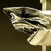 Golden Shark In Ocean City Poster