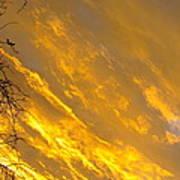 Golden Sky Poster