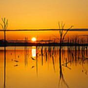 Golden Sunrise IIi Poster