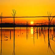 Golden Sunrise Iv Poster