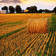 Golden Sunset Over Farm Field With Hay Bales Poster