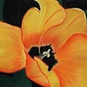 Golden Tulip Poster