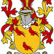 Gormley Coat Of Arms Irish Poster