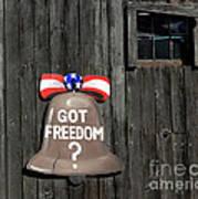 Got Freedom Poster