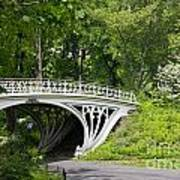 Gothic Bridge In Central Park Poster